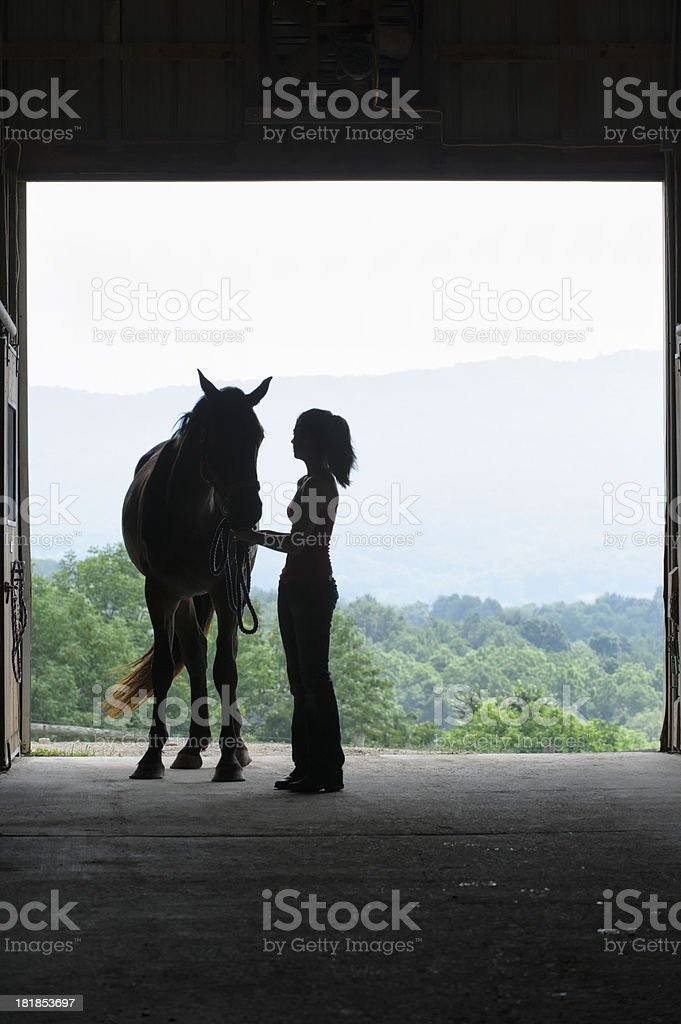 Young Woman Saddling Horse Silhouette stock photo