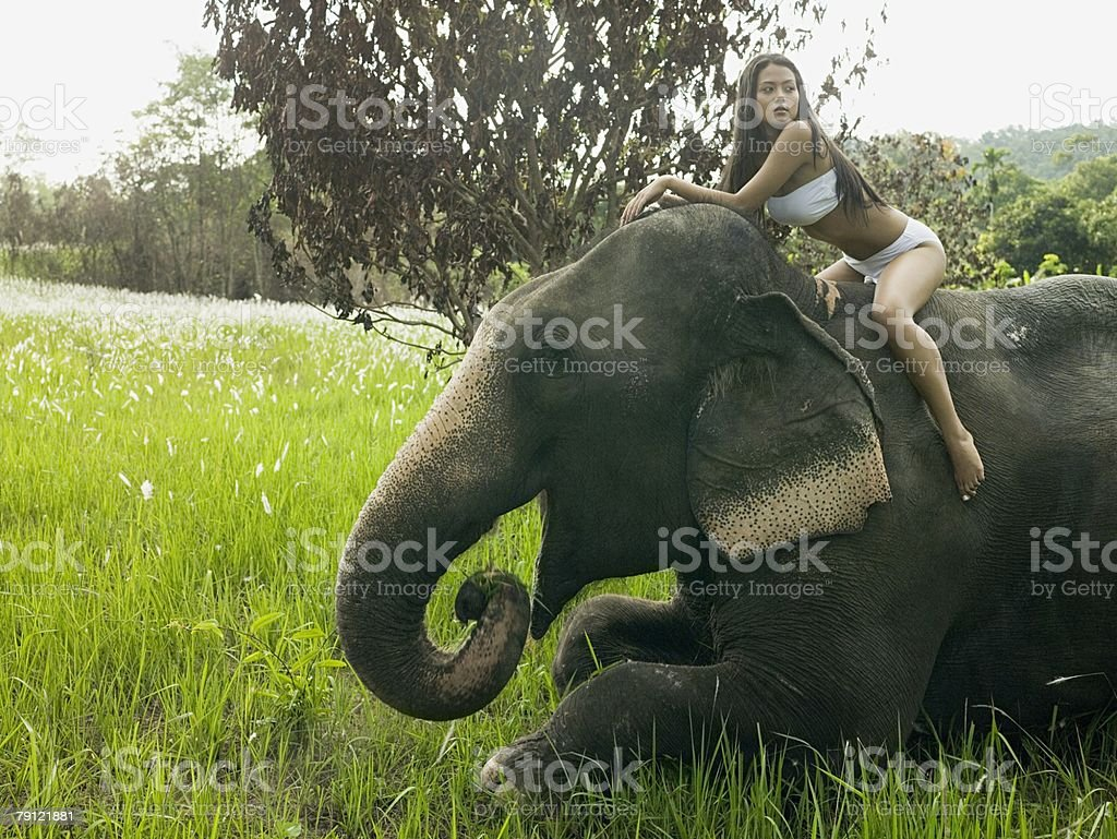 Young woman sat on an elephant 免版稅 stock photo