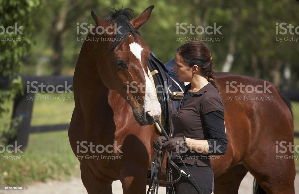 Young woman showing affection towards her horse  stock photo