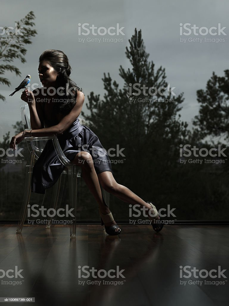 Young woman sitting on chair holding parrot at dusk royalty-free stock photo