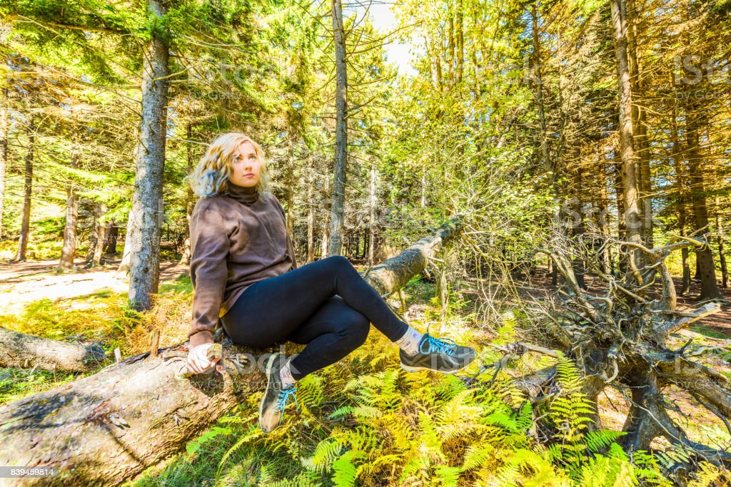 Young woman sitting on fallen tree trunk in West Virginia forest in leggings stock photo