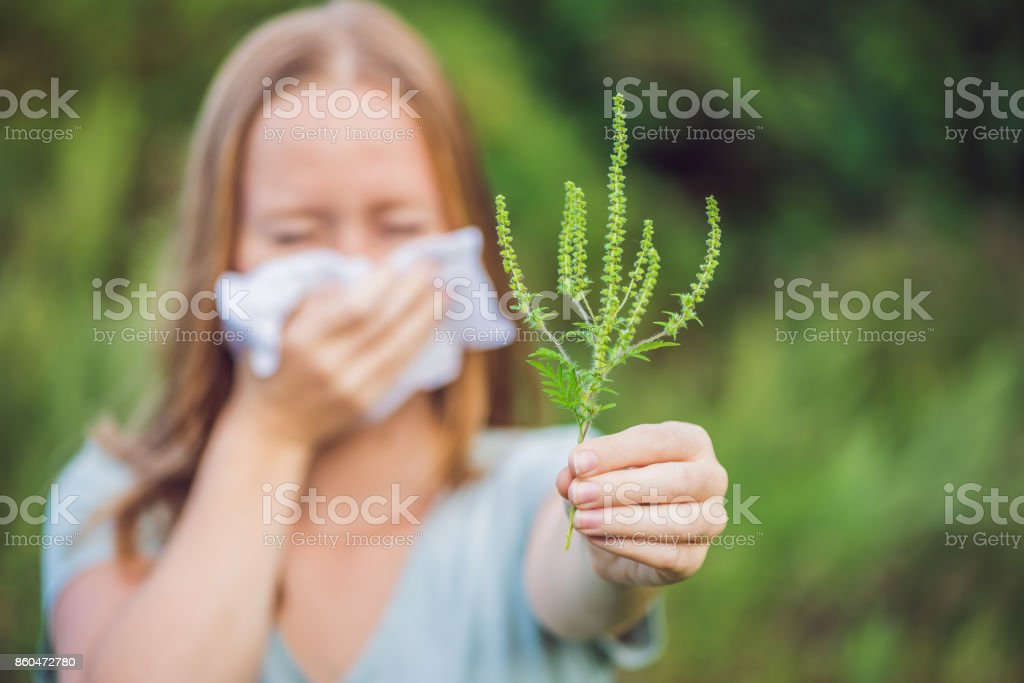Young woman sneezes because of an allergy to ragweed – zdjęcie