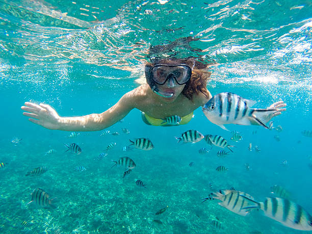 Young woman snorkeling Young woman snorkeling with the fishes in sea of Malaysia snorkel stock pictures, royalty-free photos & images