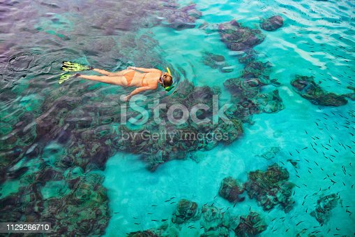 831127716 istock photo Young woman snorkeling with coral reef fishes 1129266710