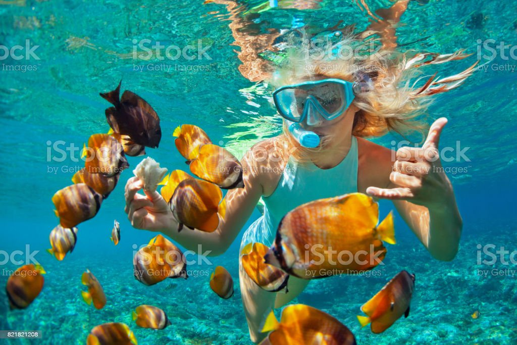 Young woman snorkeling with coral reef fishes stock photo