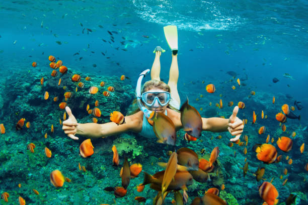 Young woman snorkeling with coral reef fishes Happy family - girl in snorkeling mask dive underwater with tropical fishes in coral reef sea pool. Travel lifestyle, water sport outdoor adventure, swimming lessons on summer beach holiday with kids underwater diving stock pictures, royalty-free photos & images