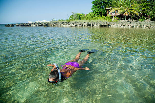 Young woman snorkelling in shallow water Roatan,Honduras, roatan stock pictures, royalty-free photos & images