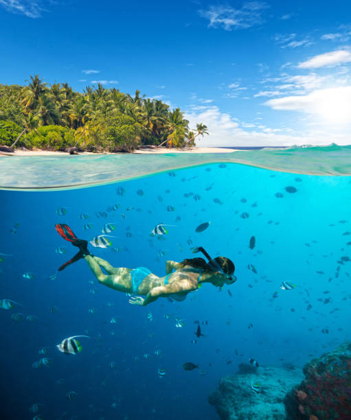 Young woman snorkling on tropical beach stock photo