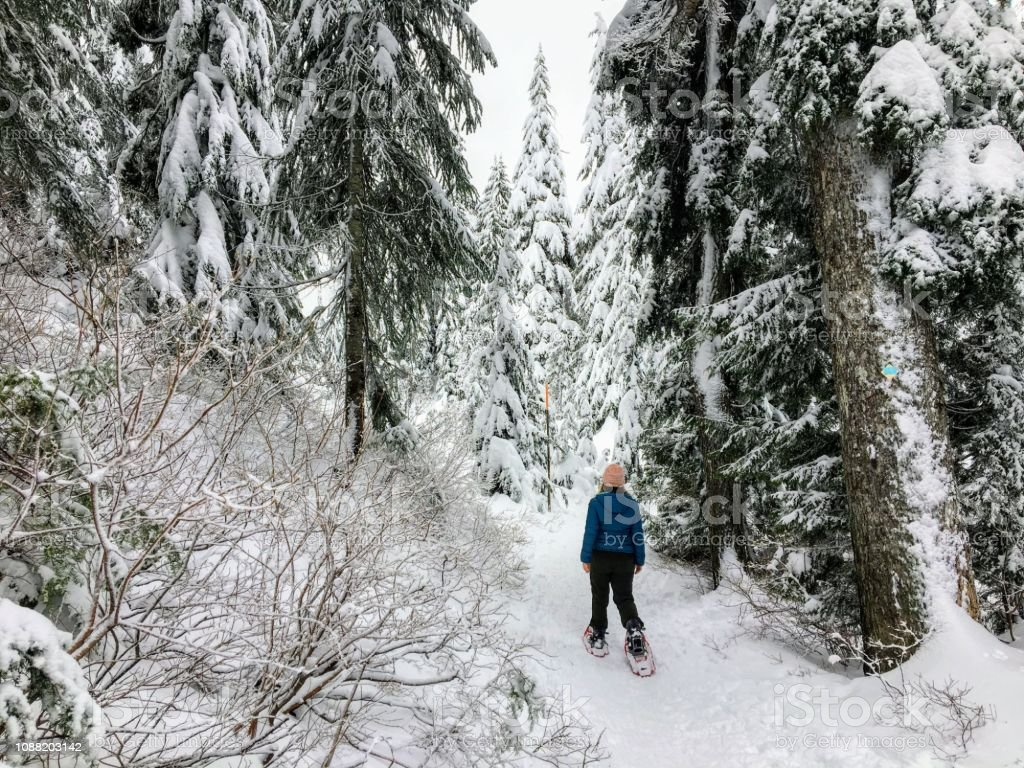 A young woman snowshoeing along the bowen island lookout trail on Cypress Mountain stock photo