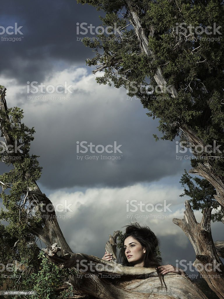 Young woman standing besides tree at dusk 免版稅 stock photo