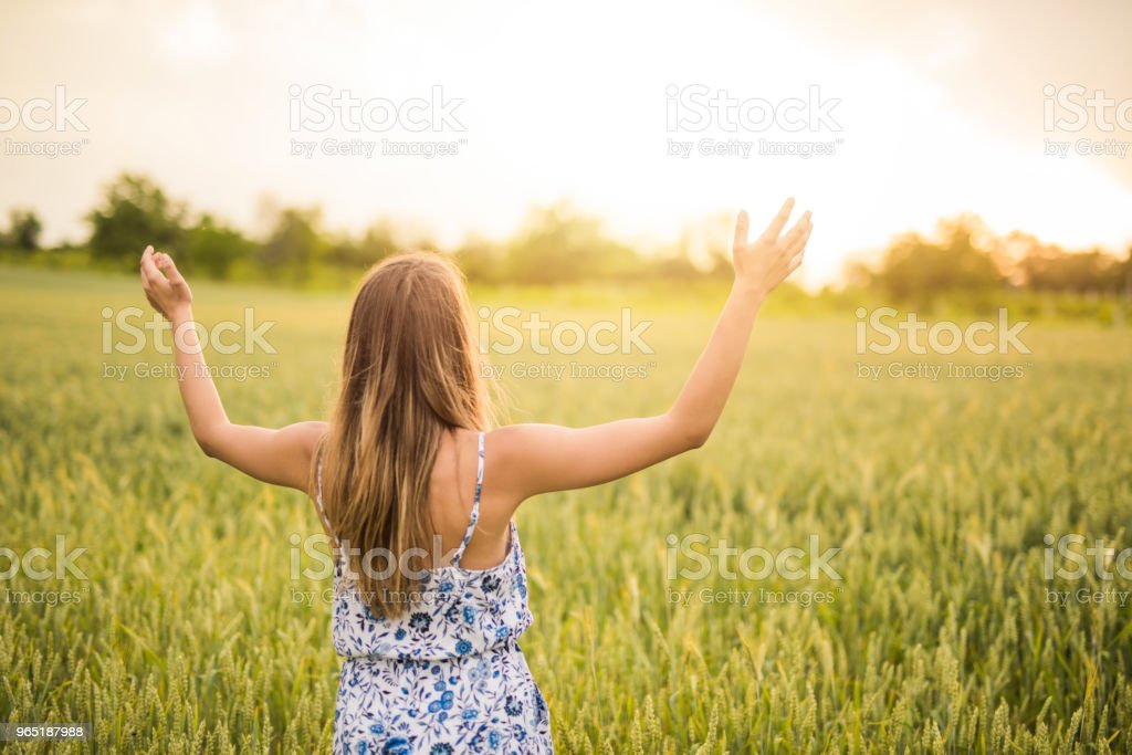 Young woman standing in barley crops with hands outstretched. zbiór zdjęć royalty-free