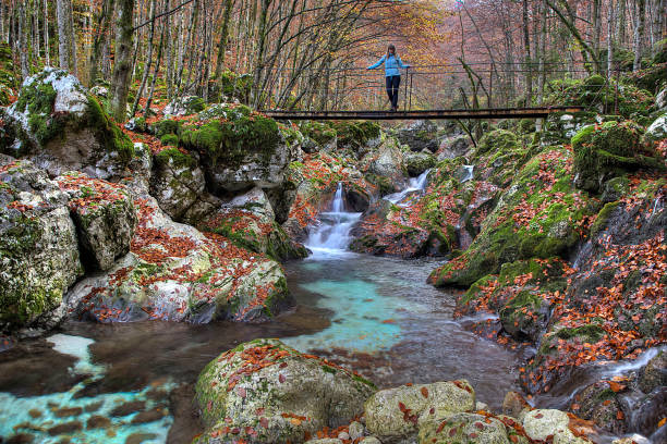 Young woman standing on a bridge over a mountain stream in the Lepena valley, Slovenia, Europe stock photo