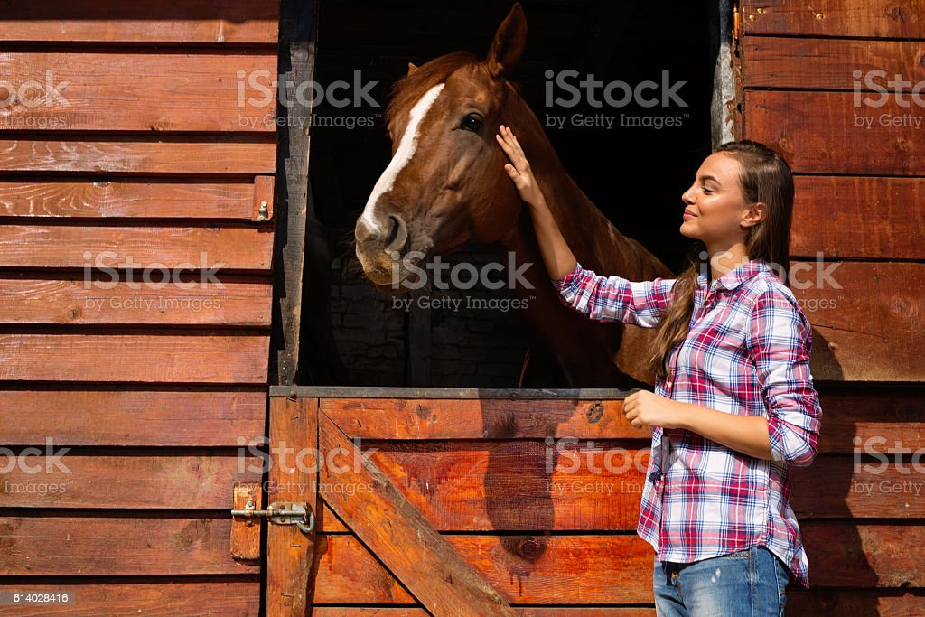 Young woman stroking a brown horse. stock photo