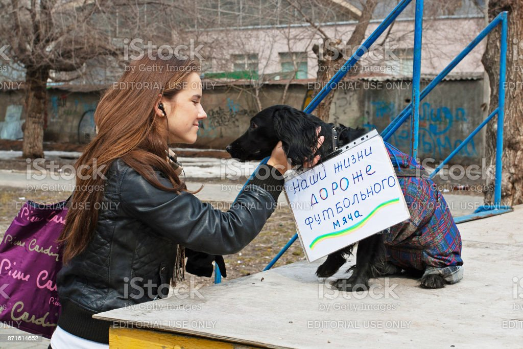 Young woman stroking dog with table (translated from the Russian 'Our lives are more expensive than a soccer ball') in international action for the protection of animals 'Fair Play' in Volgograd stock photo