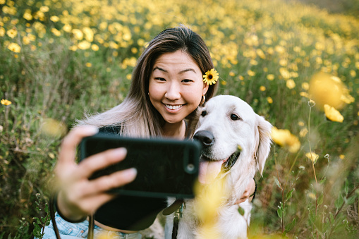 A happy Korean woman enjoys spending time with her Golden Retriever outdoors in a Los Angeles county park in California on a sunny day.  She cuddles her beloved pet.