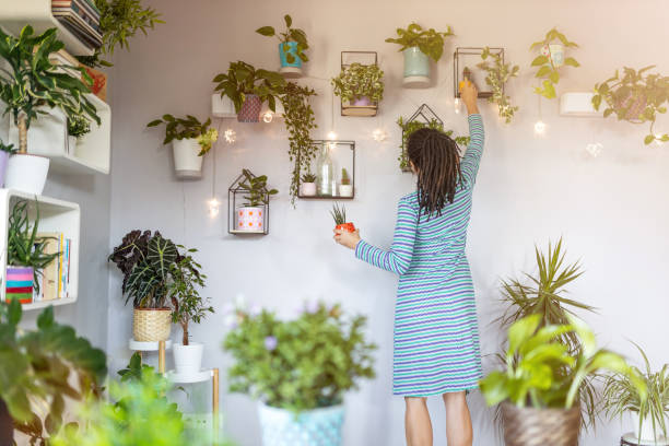 Young woman taking care of her potted plants at home Young woman taking care of her potted plants at home houseplant stock pictures, royalty-free photos & images