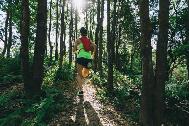Young woman trail runner running in sunrise tropical forest stock photo