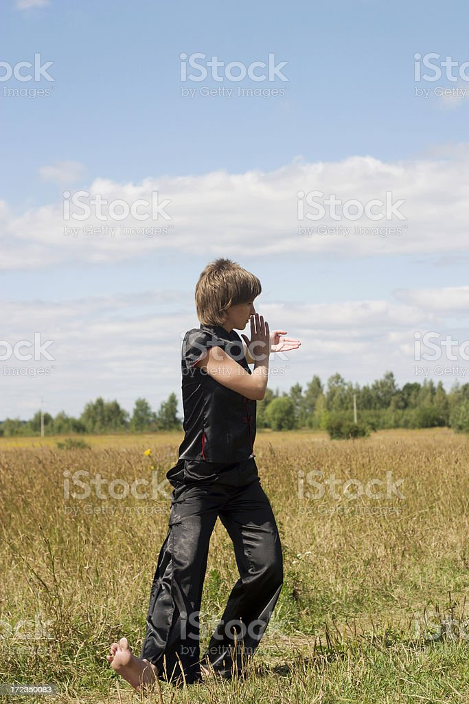 Young woman training Kung Fu outdoors royalty-free stock photo