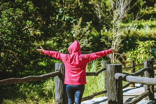 Young Woman Travel Nature Is Walking Forward In The Direction Of The Wooden Bridge Stock Photo - Download Image Now