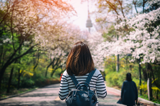 istock Young woman traveler backpacker traveling into N Seoul Tower at Namsan Mountain in Seoul City, South Korea. 974138852