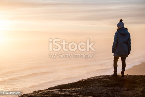 629376126istockphoto Young woman traveling solo in Iceland 1142492672