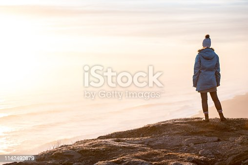 629376126istockphoto Young woman traveling solo in Iceland 1142492679