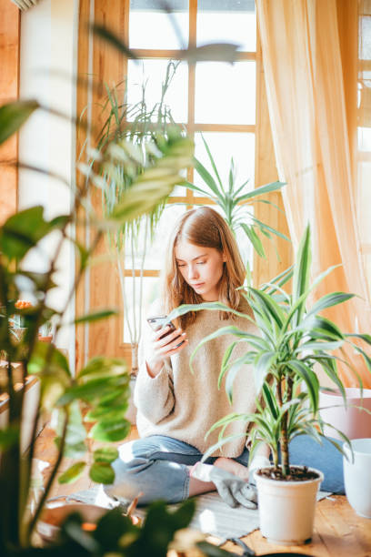Young woman using smartphone. stock photo