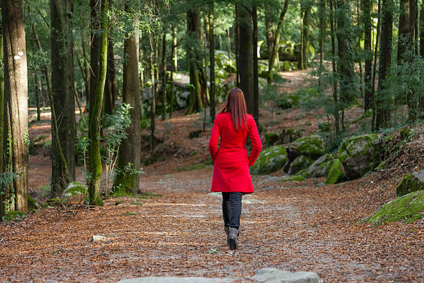 Young woman walking away alone on a forest path – Foto