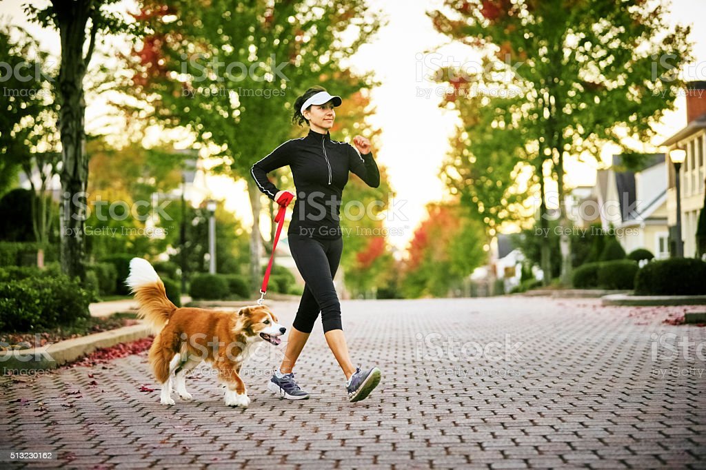 Young Woman Walking Dog stock photo