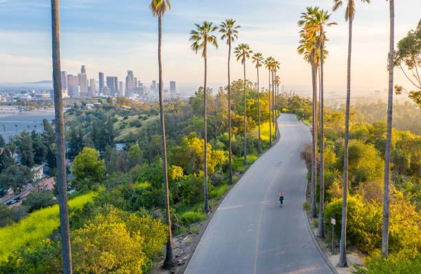 молодая женщина ходить по пальмам улице выявление центре лос-анджелеса - деловой центр города стоковые фото и изображения