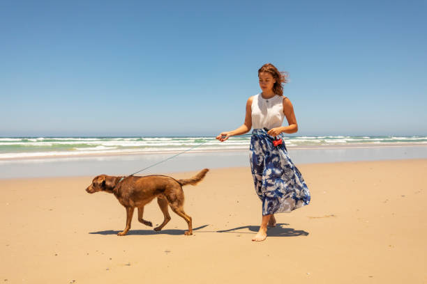 Young Woman Walking Her Dog at the Beach stock photo