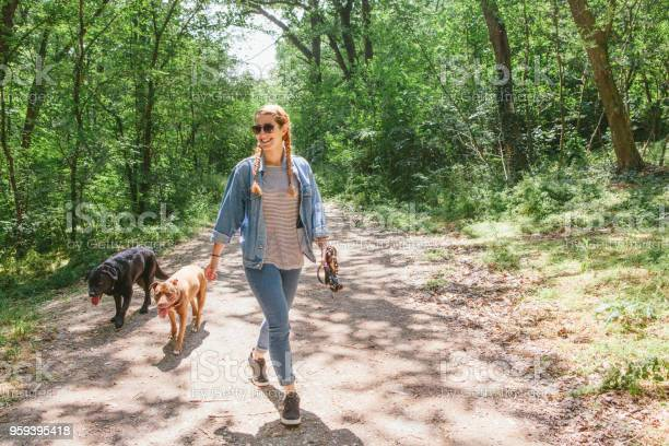 Young woman walking her dogs picture id959395418?b=1&k=6&m=959395418&s=612x612&h=mt3k9xlb5fnom6saisnzn74mkwbjjuu5lp6p6cpf8rk=