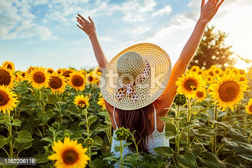 Happy young woman walking in blooming sunflower field raising hands and having fun. Summer vacation.