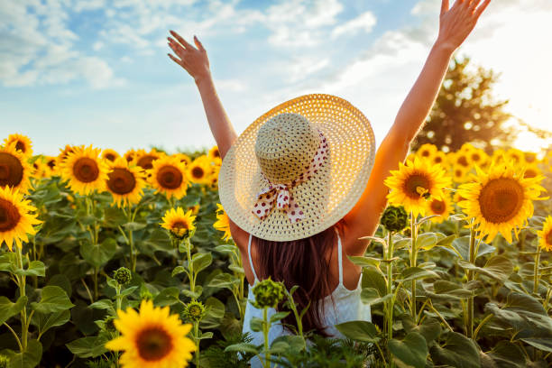 Young woman walking in blooming sunflower field raising hands and having fun. Summer vacation