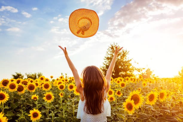 Young woman walking in blooming sunflower field throwing hat up and having fun. Summer vacation stock photo