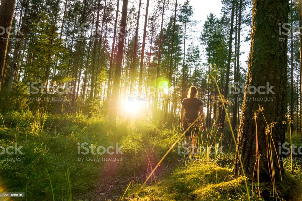 Young woman walking in forest path at sunset. Summer night in nature at dawn. Carefree lifestyle. Sun shining. Girl hiking in the woods. - Royalty-free Adult Stock Photo