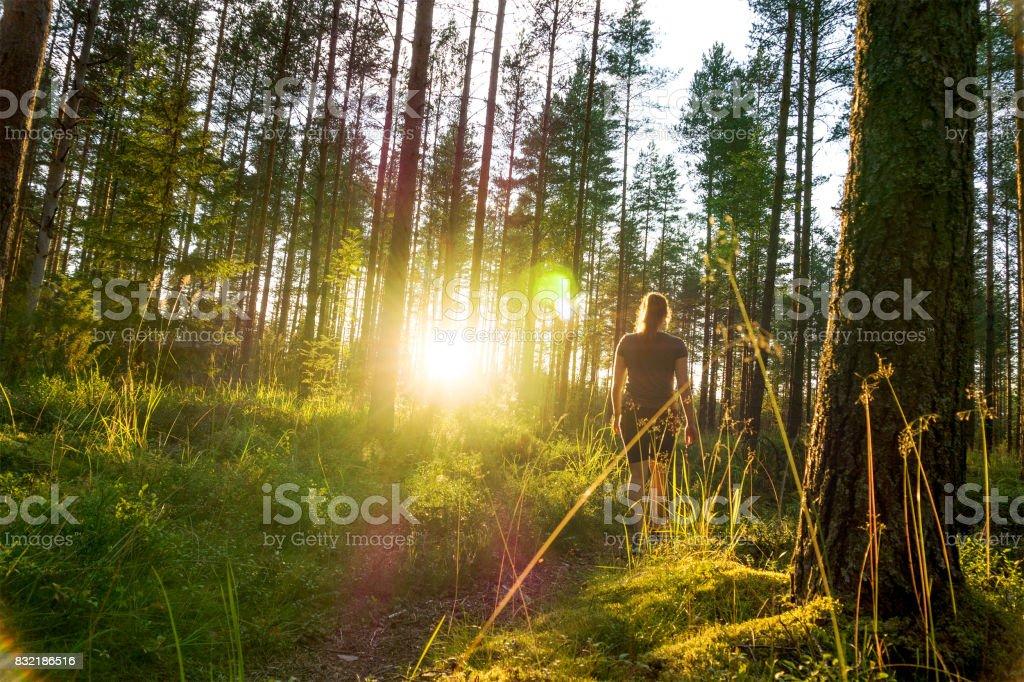 Joven mujer caminando en el sendero del bosque al atardecer. Noche de verano en la naturaleza al amanecer. Estilo de vida despreocupado. Sol que brilla. Muchacha de senderismo en el bosque. - foto de stock