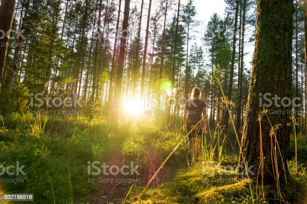 Photo of Young woman walking in forest path at sunset. Summer night in nature at dawn. Carefree lifestyle. Sun shining. Girl hiking in the woods.