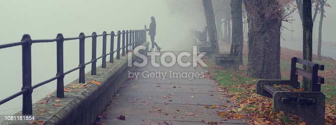 Beautiful girl standing beside railing of pedestrian walkway on misty autumn day.