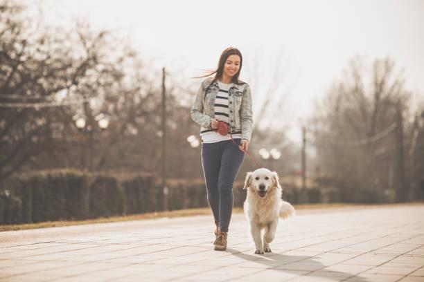 Junge Frau spaziert mit Golden Retriever in die Stadt – Foto