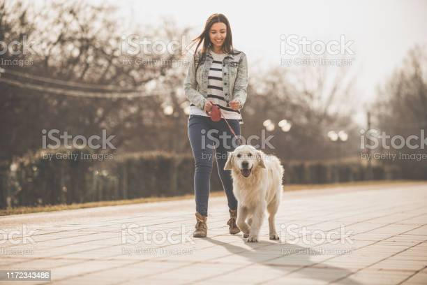 Young woman walking with golden retriever in the city picture id1172343486?b=1&k=6&m=1172343486&s=612x612&h=brlyuufcajyhhl8pgo7j1t9mzyfjkav0 7hvuc6t5ju=