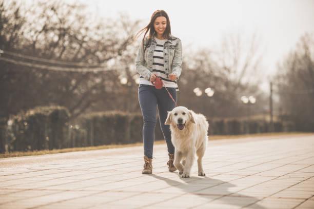 Junge Frau zu Fuß mit goldenen Retriever in der Stadt – Foto