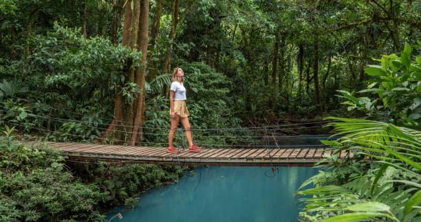 Young woman wandering in tropical rainforest walking on bridge over turquoise lagoon stock photo