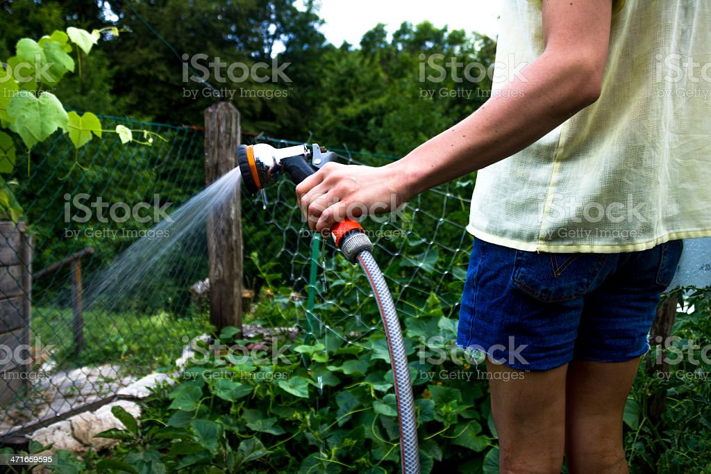 Young woman watering her garden royalty-free stock photo