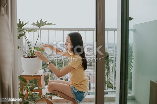 Portrait of beautiful Southeast Asian woman watering monstera tree at her apartment in the city, Bangkok Thailand