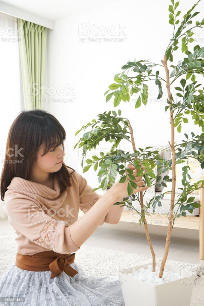 Young woman watering plants at home royalty-free stock photo