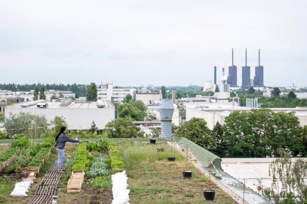 Young woman waters plants in an urban garden in front of a power station stock photo
