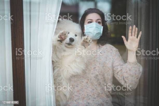 Young woman wearing medical mask standing near the window with dog picture id1216618380?b=1&k=6&m=1216618380&s=612x612&h=rnrgxdm8m iqxicsm qt27s2dk1ormi97xeaeiulm9k=