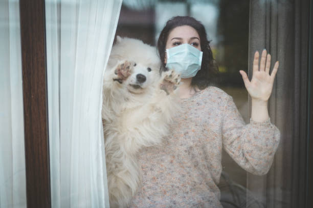 Young woman wearing medical mask standing near the window with dog picture id1216618380?b=1&k=6&m=1216618380&s=612x612&w=0&h=6826vyumkjkosv qwyrztesj5kawe26kwvlwefb3gsy=