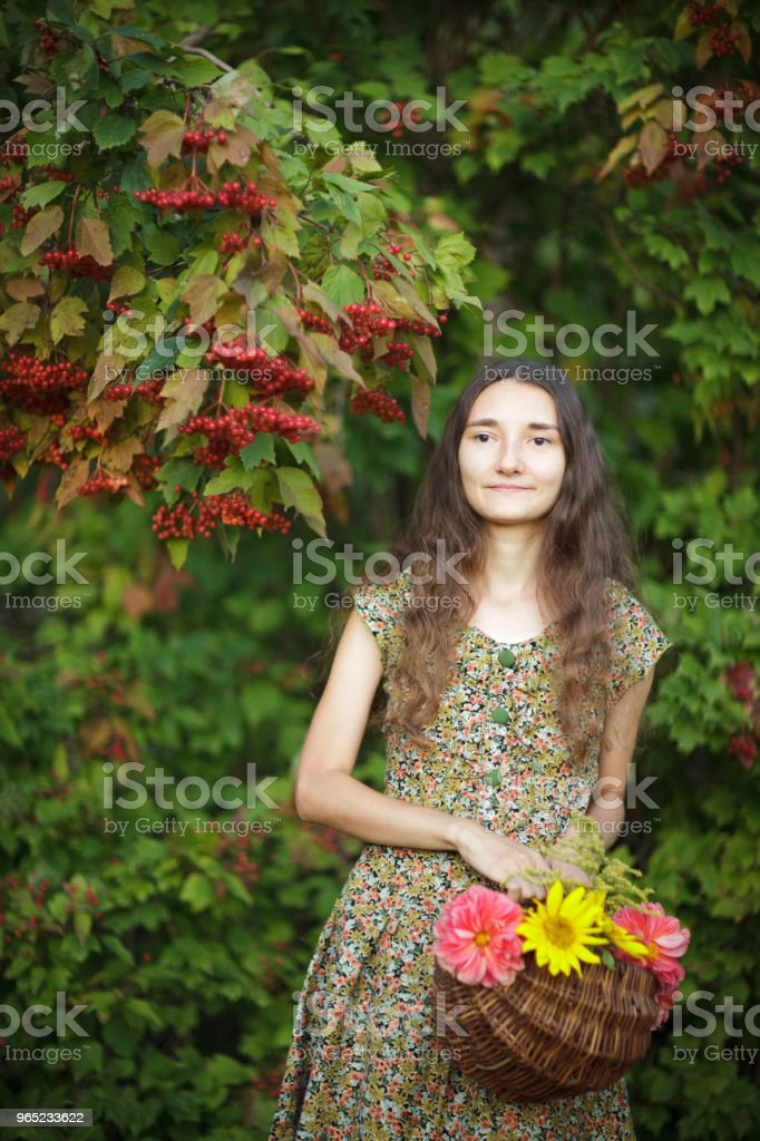 Young woman with a basket of flowers on a background of viburnum. royalty-free stock photo